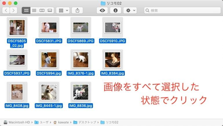 Macで複数写真をA4用紙1枚に並べて印刷する方法ーまず、最初の手順として印刷したい画像をまとめて選択してクリックします。