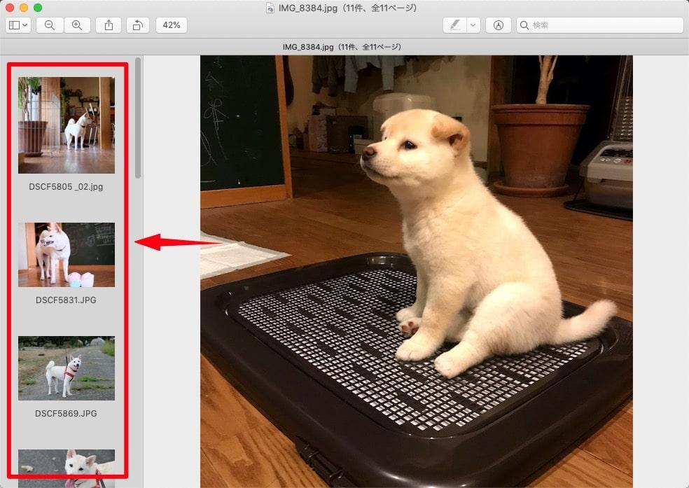 Macで複数写真をA4用紙1枚に並べて印刷する方法ー画像がプレビューにまとめて表示された状態