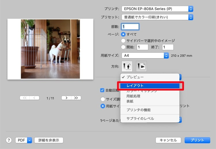 Macで複数写真をA4用紙1枚に並べて印刷する方法ープリントオプションが開いたら「プレビュー」とあるプルダウンメニューから「レイアウト」を開きます。