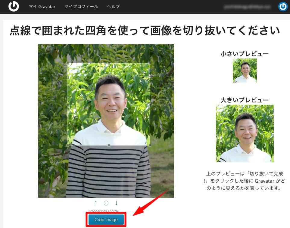サイズが決まったら「Crop Image」を選択します